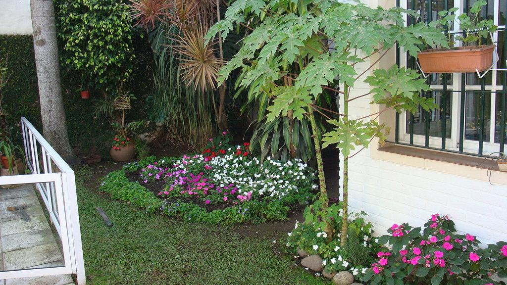 Decoraci n natural las plantas como aliadas ja - Como arreglar mi jardin con poco dinero ...