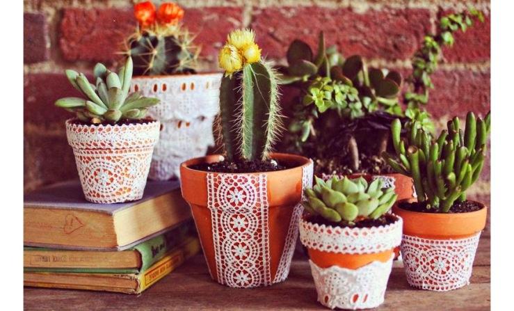 plantas-tener-en-un-jardin -con-masetas