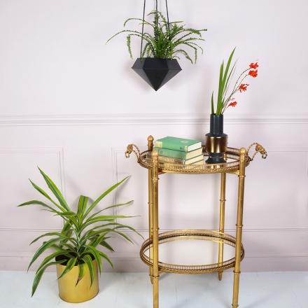 miafleur-plantas